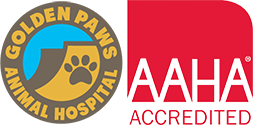 Vet In Colorado | Golden Paws Animal Hospital Logo